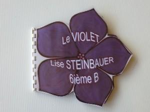 violet (2)