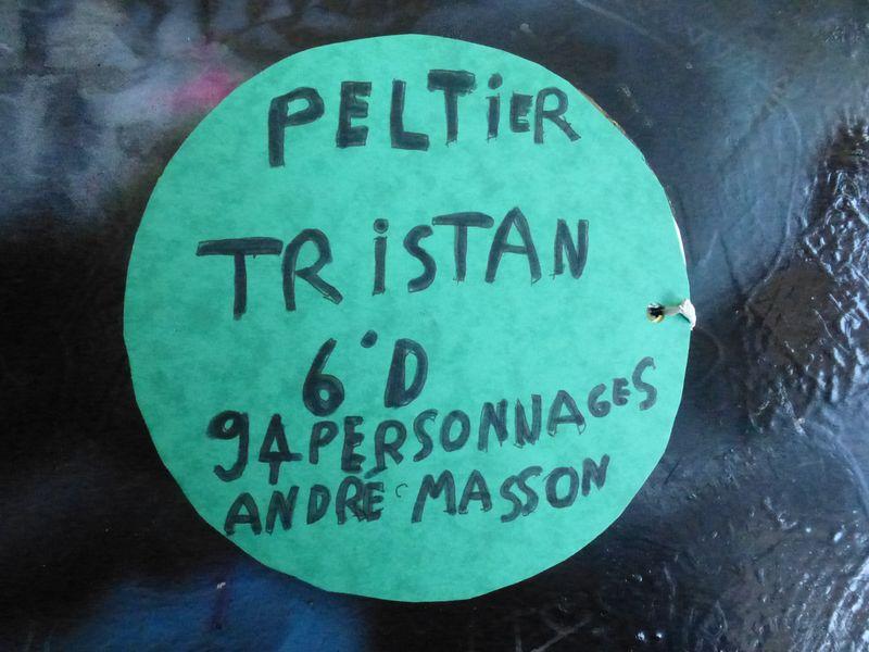 tristan (8)